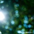 pict-写真 2017-07-28 13 56 01